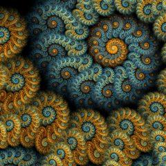 So what's a fractal ?